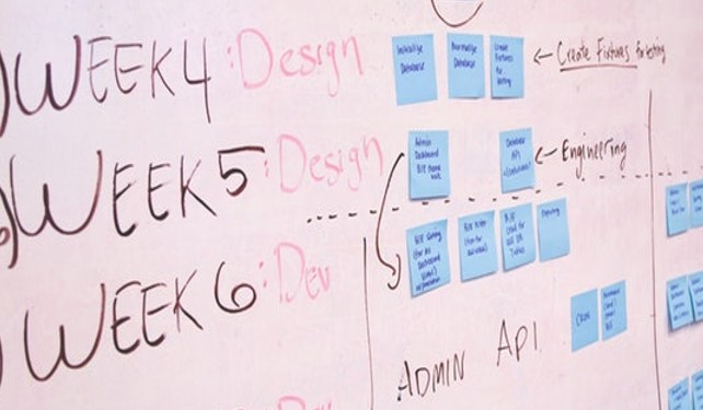 5 Steps to Determining Project Details
